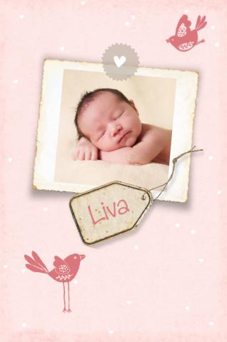 geboortekaartje vintage lief vogeltjes label en foto - birthcard